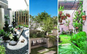 Desain Taman Belakang Rumah