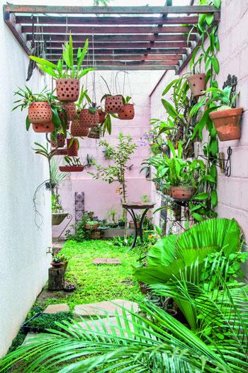 desain taman belakang rumah minimalis