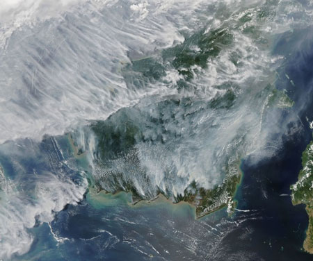 Dampak kerusakan hutan di Kalimantan