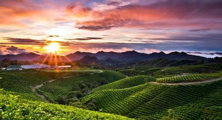 Tempat Wisata Pegunungan di Indonesia