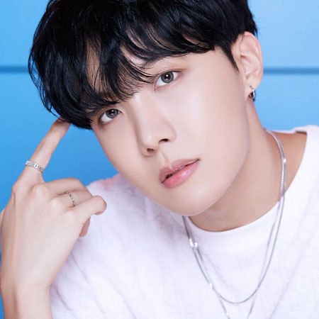 Hobi Para Member BTS