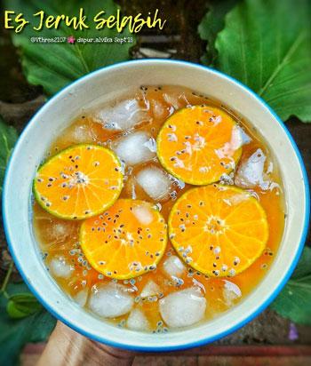 Aneka Resep Minuman Segar Yang Praktis