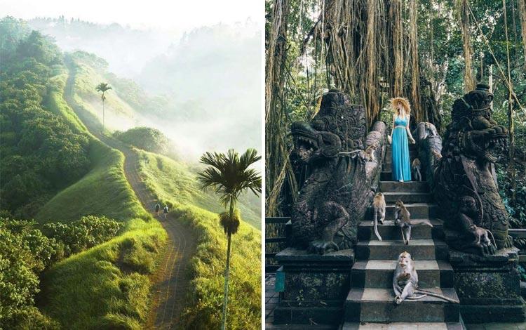 Tempat wisata Ubud terfavorit