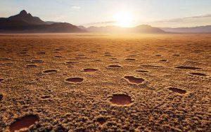 Fairy Circles Namibia