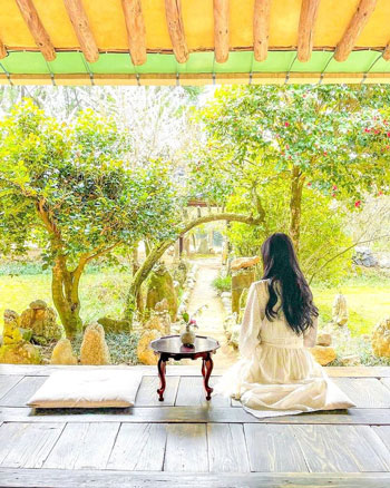 Tempat Bulan Madu Romantis Di Korea Selatan